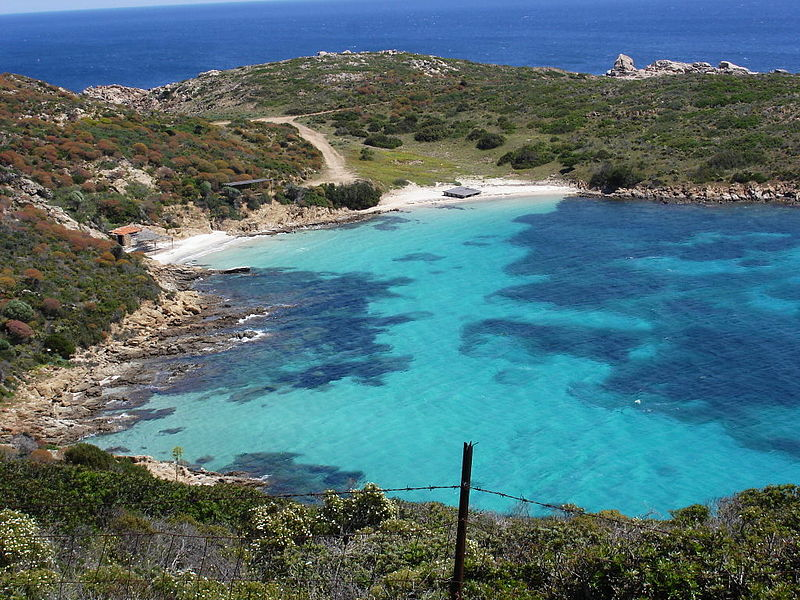Plage de Asinara - Wikipédia